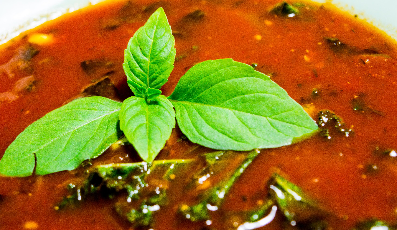 zupa pomidorowa z algami